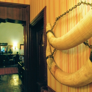 ElephantTusks_Decor_Detail_Property_StanleyLivingstone