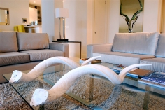 Kudu_Horns_Livingroom_TwoBedRoom_Detail