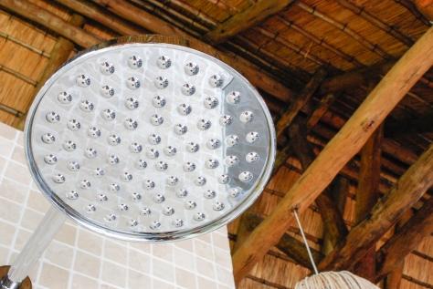 Showerhead_Detail_RoyalChundu