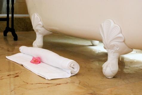 SuperiorDouble_Bathmat_Rose_BathtubClaws_Bathroom.TLW_BC